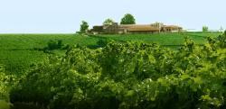 Gerovassilou Wine Museum
