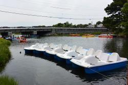 Swan Pond River