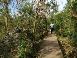 柴山自然公园