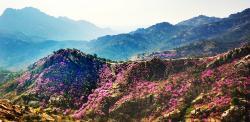 Zhu Mount