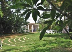 Garden with maze