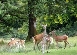 Le Sterou Parc Naturel