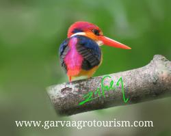 Garva Agro Tourism