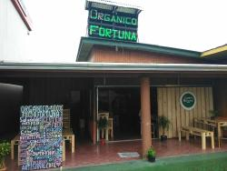 Organico Fortuna