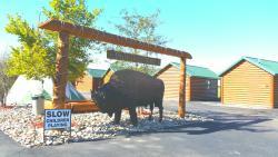 Frontier Cabins Motel