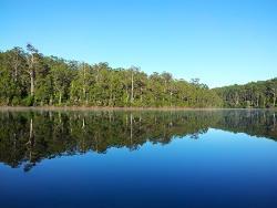 Big Brook Dam