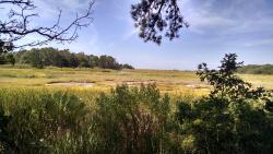 Wellfleet Bay Wildlife Sanctuary