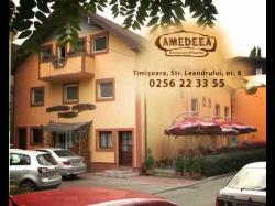 Restaurant Amedeea
