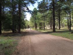 Country Club Trail