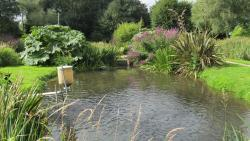Blakewell Water Gardens and Trout Fishing and Farm Shop