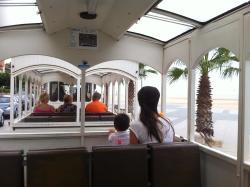 Tren Turistico Carrilet