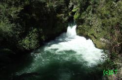 Okere Falls Track