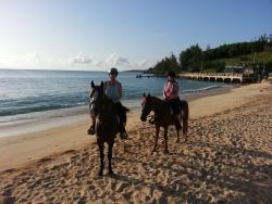 Bermuda Horse Trail Ride