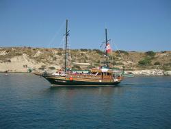 Magellanos