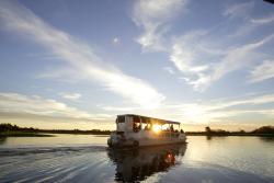 Yellow Water Cruises