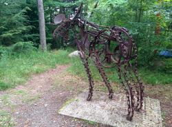 Haliburton Sculpture Forest