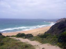 Bungan Beach