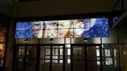 Musée van Gogh