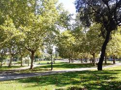 Parc de Les Morisques