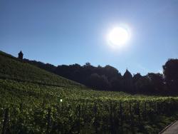 Weingut und Hotel Haus am Drachenloch