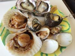 Seafood Restaurant Nichinan Suisan