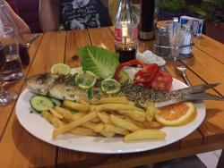 Special Fish plate