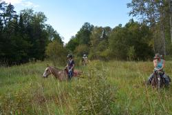 D-N-D Stables Guided Trail Rides