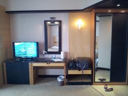 Vanity mirror, TV & refrigerator