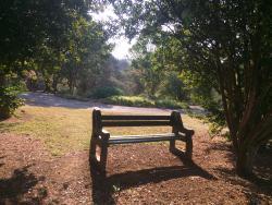 Wylie Park