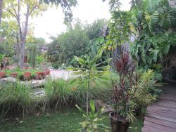 Herb Garden Pattaya