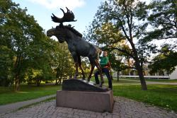 Monument to Elk