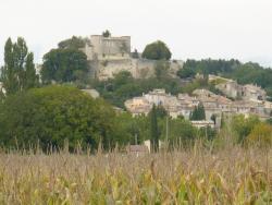 Citadelle de Mane