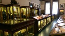 Mansfield Memorial Museum