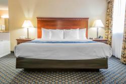 Comfort Inn Grand Blanc