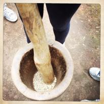 Kahawa Shambani-Africa Coffee Tour