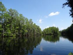 Shingle Creek Regional Park