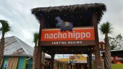 Nacho Hippo