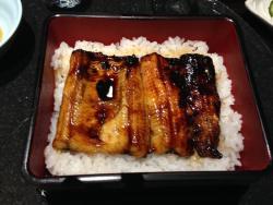 Unagi (Japanese Eel) Takeda