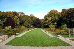 阿诺德树木园