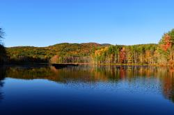 Quincy Bog Natural Area