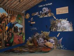 Espaco Coral Vivo Mucuge