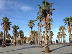 Buenas Migas Plaza del Mar