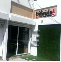 Híbridos Café C.A.