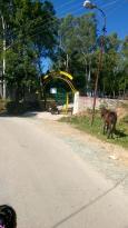 Neogal Park