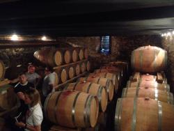 Massimago Winery