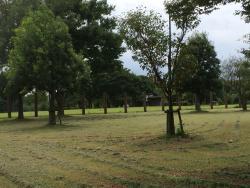 Hoki Kokufu-ato Hokkeji-bata Ancient Ruin