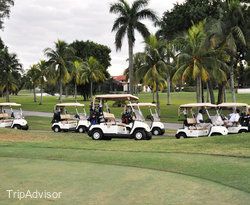 Golf at the Doral Golf Resort And Spa