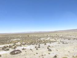 Salinas y Aguada Blanca National Reserve