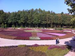 Heidegarten im Höepen