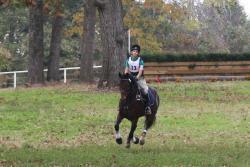 Texas Rose Horse Park